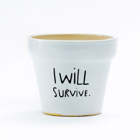 Pot I will survive-Fab